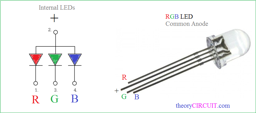 common anode rgb led pinout - theorycircuit